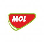 mol-1x1-1